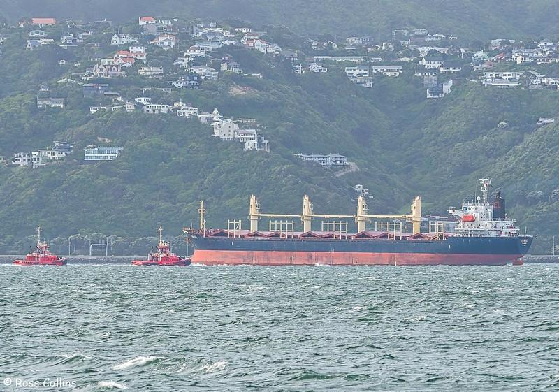'Inase' arriving at Wellington, 10 December 2018
