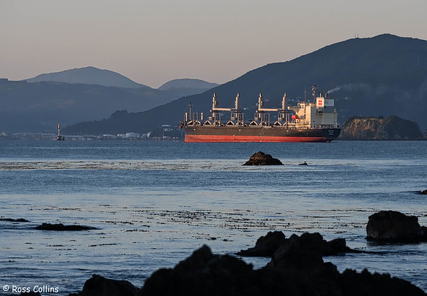 'Ken Ann' arriving at Wellington, 14 June 2020