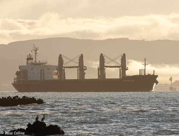 'Nanaimo Bay' departing from Wellington, 1 July 2021