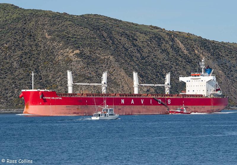 'Navios Celestial' arriving at Wellington, 2 August 2020