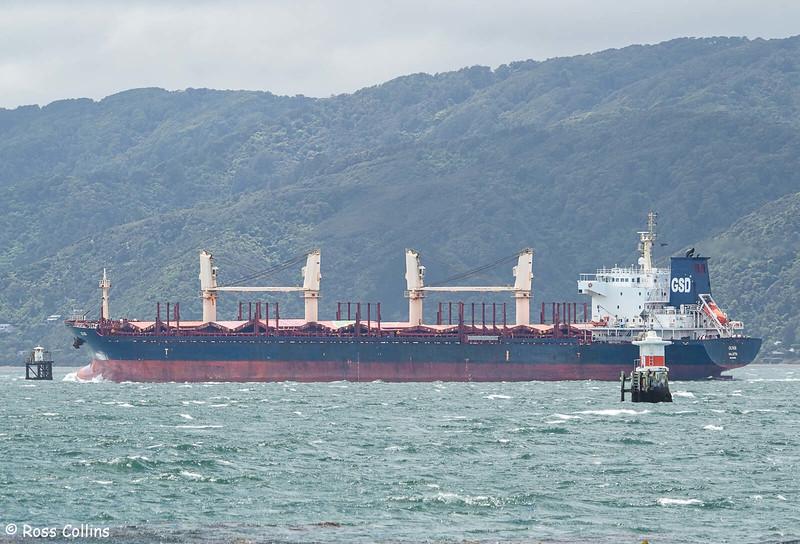 'MV Olivia' arriving at Wellington from Tauranga, 16 November 2020