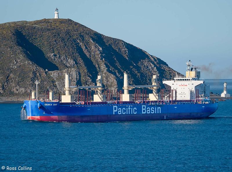 'Osaka Bay' arriving at Wellington, 27 July 2020
