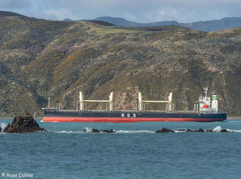 'Spica Harmony' arriving at Wellington, 4 August 2021