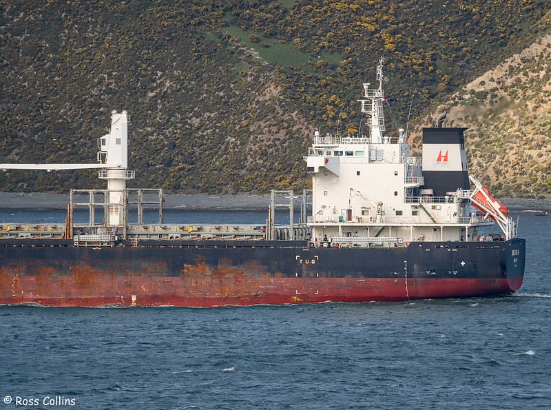 'Xing Rong Hai' arriving at Wellington, 8 September 2020