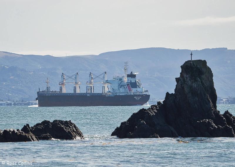 'Xing Ru Hai' arriving at Wellington, 24 March 2020