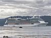 'Celebrity Solstice' departs from Wellington, 13 December 2017