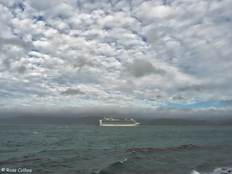 'Emerald Princess' departs from Wellington on 17 January 2017