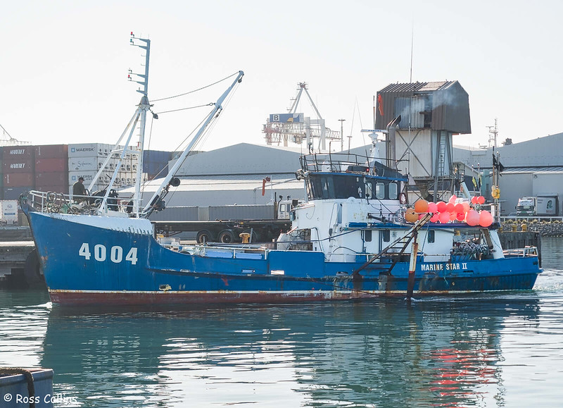 'Marine Star II' at Wellington, 26 April 2016