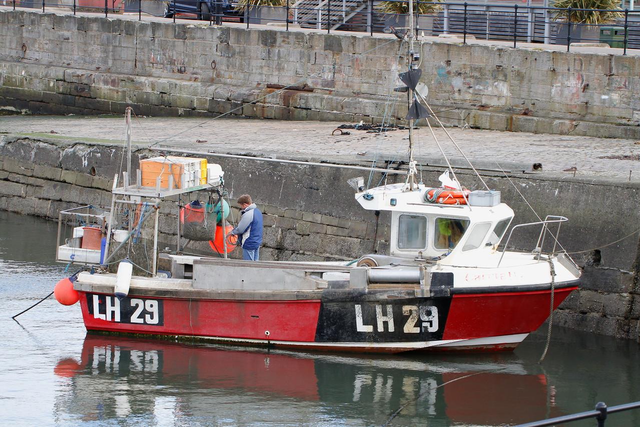 CARRIE B LH-29