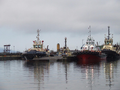 Tugs of the SvitzerWijsmuller company at rest in James Watt Dock