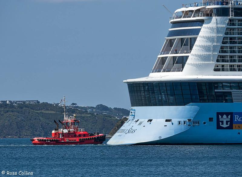 'Ovation of the Seas' arrival at Wellington, 15 January 2018