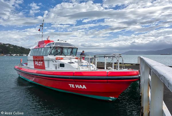 'Te Haa' 2017