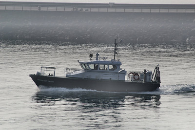 SD SOLENT RACER - Heading into Plymouth Harbour to drop off a pilot 12.03.14