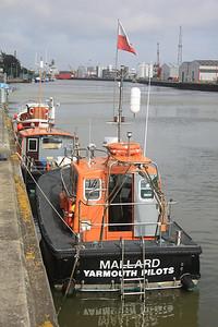 MALLARD @ Great Yarmouth 30.09.10