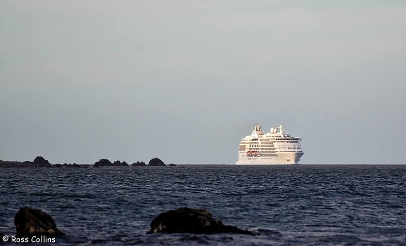'Seven Seas Navigator', Wellington, 22 February 2017