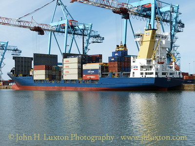 Container Ship INDIA at Seaforth - August 24, 2014