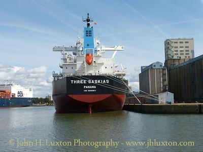 THREE SASKIAS at Seaforth Dock - August 24, 2014
