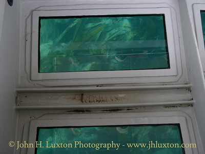 SEA QUEST - The Glass Bottomed Boat - July 30, 2005