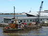 MSC BUFFALO at Liverpool Pier Head - July 18, 2015