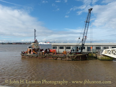 MSC BUFFALO at Liverpool Pier Head - September 16, 2017