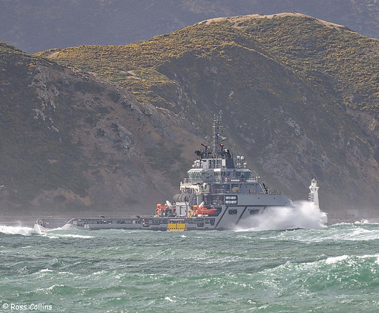 'Janequeo' departing from Wellington, 30 January 2021