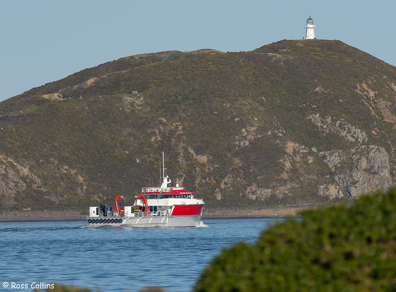'Offshore Surveyor' at Wellington, 24 July 2021