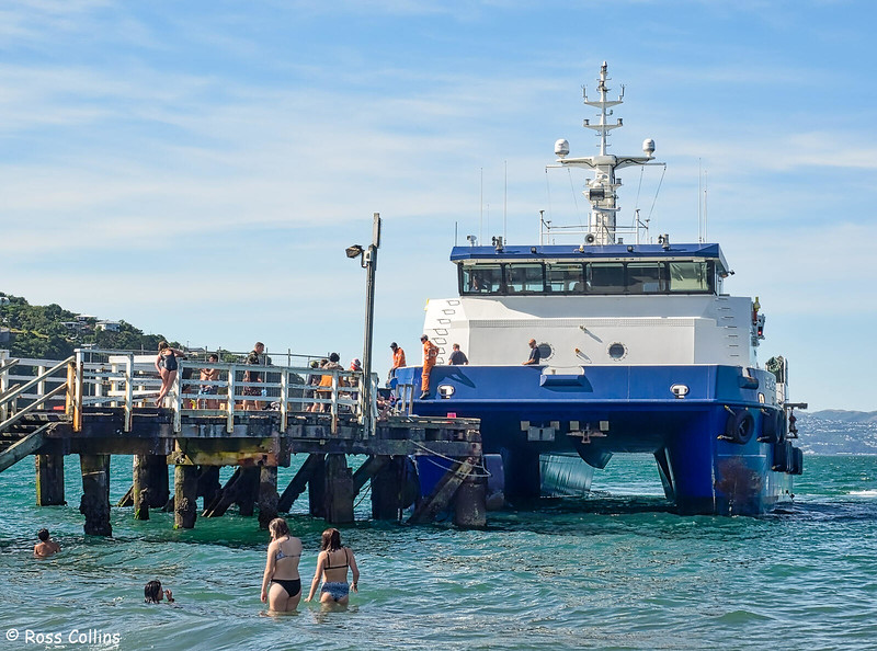 'Seaworker' calling at Seatoun Wharf, 28 January 2019