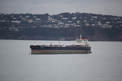 RATNA SHALINI IMO:9439670 57144gt - Anchored in Torbay 04.12.10