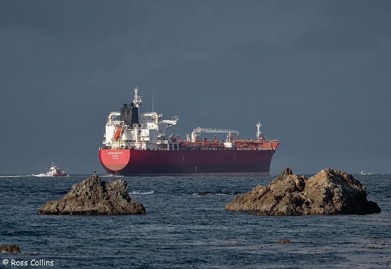 'Excelsior Bay' arriving at Wellington, 16 May 2020