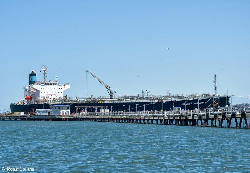 'Maersk Miyajima' discharging at Point Howard, 29 November 2020