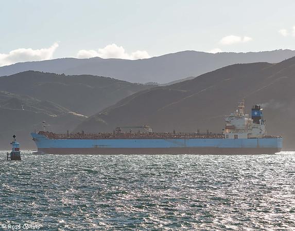 'Maersk Torshavn' arriving at Wellington, 24 February 2021