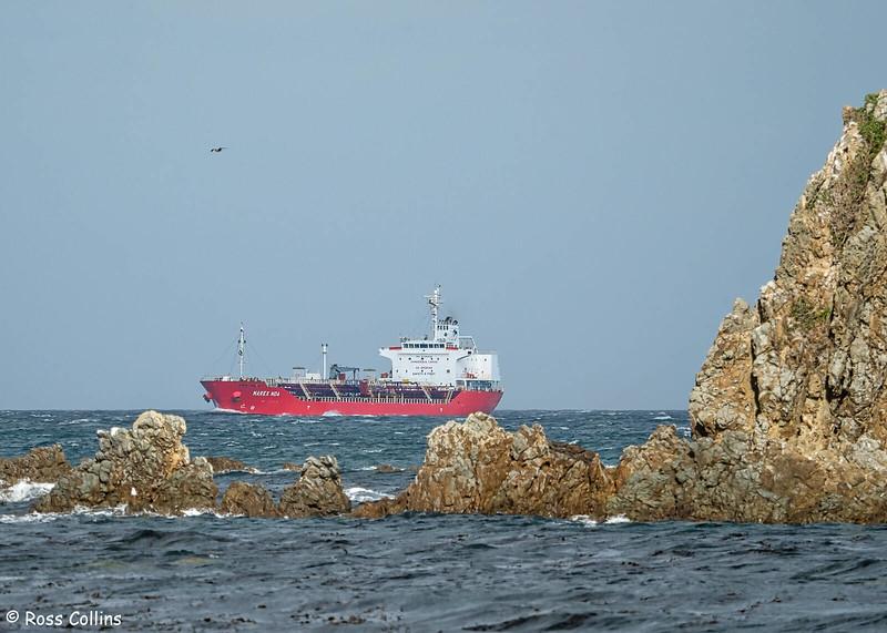 'Marex Noa' arriving at Wellington, 2 May 2020