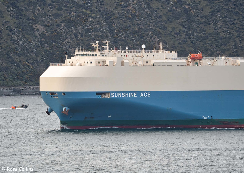 'Sunshine Ace' arriving at Wellington, 31 July 2020