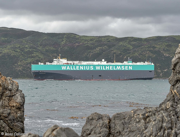 'Turandot' arriving at Wellington, 30 November 2020