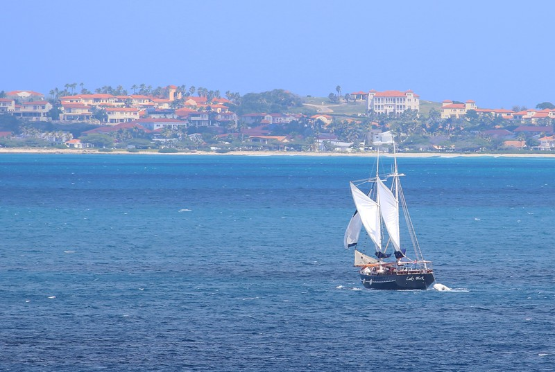 "The ""Lady Black"" Aruba"