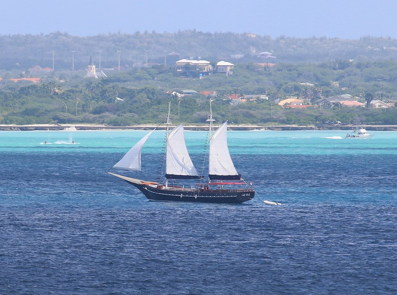 "The ""Lady Black"" Aruba"