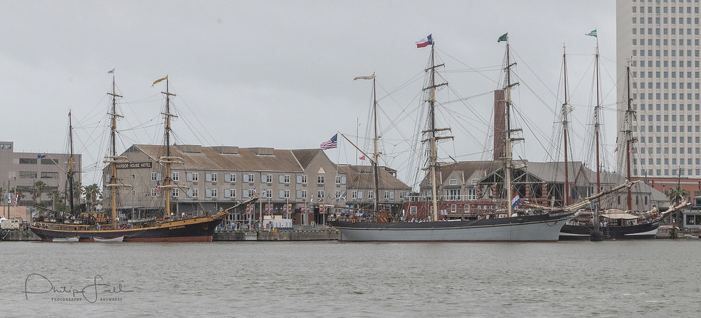 The Tall Ships tied up along side the piers in Galveston harbor. What a site.
