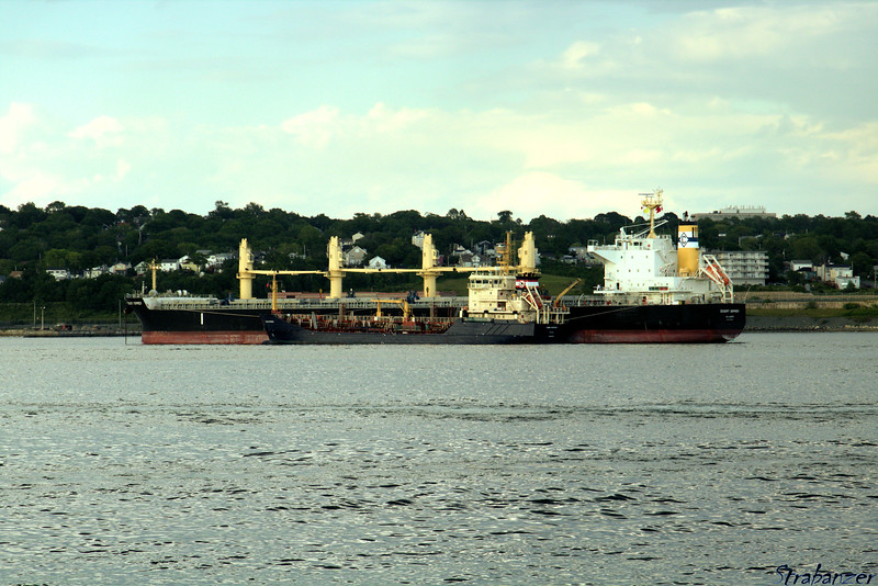 """Harbour bunkering tanker """"Algoma Dartmouth"""" tied up alongside<br /> Bulk Carrier """"Desert Osprey""""<br /> Halifax Harbor, NS, Canada 06/29/2017<br /> This work is licensed under a Creative Commons Attribution-<br /> NonCommercial 4.0 International License"""