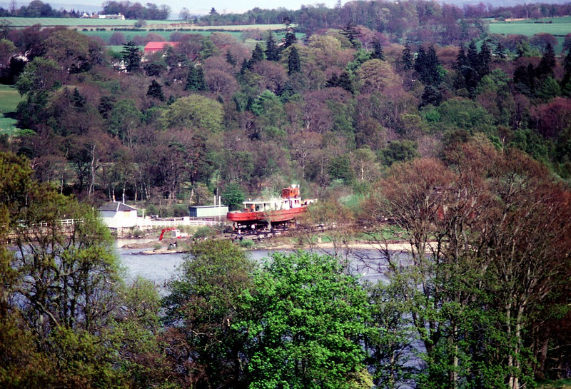 As it was not possible to lift the Countess' parts onto the Balloch patent slip (on which the Maid had been built in 1953), a small launch basin and temporary launch ways were constructed in the small bay between the slip and Balloch pier. In this view the Countess can be seen on the temporary ways. The patent slip can be seen in front of the vessel, through the trees .
