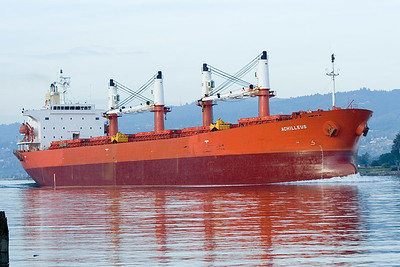 Bulk Carriers (Bulkers)