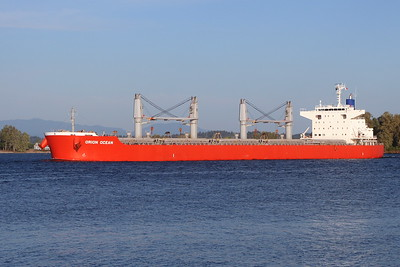 ORION OCEAN - IMO 9738935 - Built 2015
