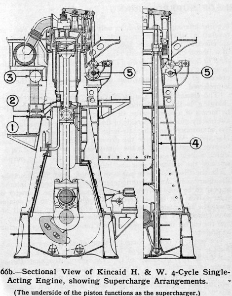 Cross sectional view of a 4 stroke cycle single acting B&W-H&W diesel engine built by John G Kincaid & Co at Greenock.