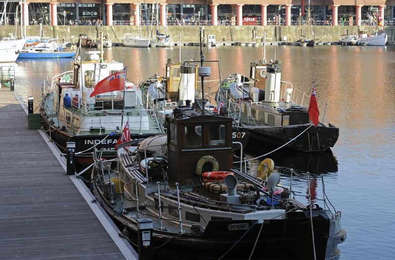 HLD 6807 Snowbird (nearest), Indefatigable, HLD 6507 Rainbird & HLD 6512, Albert Dock, Liverpool, Sun 26 May 2013