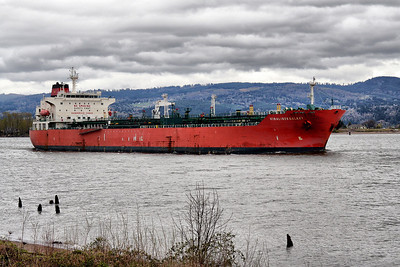 VINALINES GALAXY (9337339)  Columbia River, Columbia City, Oregon