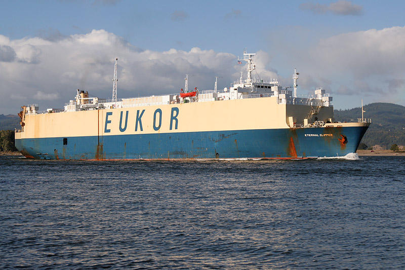 ETERNAL CLIPPER IMO number : 7816903