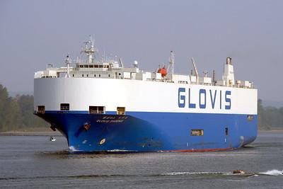 GLOVIS PHOENIX - IMO 9114165 - Built 1995