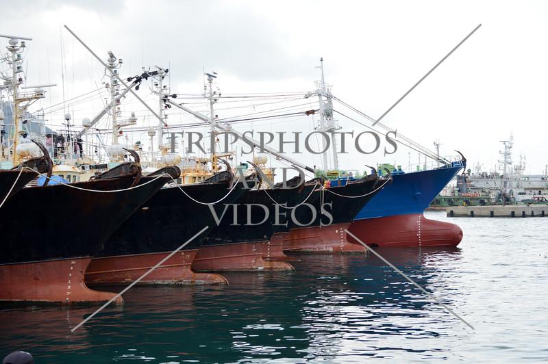 Fishing boats docked at the port of Busan, South Korea.