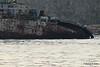 RASA SAYANG Wreck 2 Slipper Workboats Salamis PDM 19-10-2015 09-18-25c