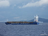 HARMONY M with Timber Load Corfu Channel PDM 26-09-2014 11-54-007