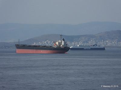 MIGHTY PLEIADES NEPTUNE AEGLI Piraeus Roads PDM 01-06-2015 15-16-58